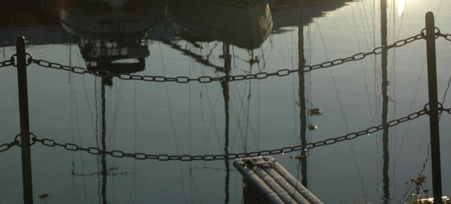 Gjerder og vannweb